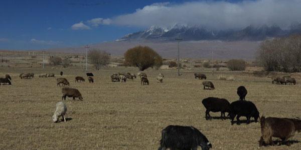 从塔城地区到喀什石头城旅游 10月11月塔城地区到喀什石头...