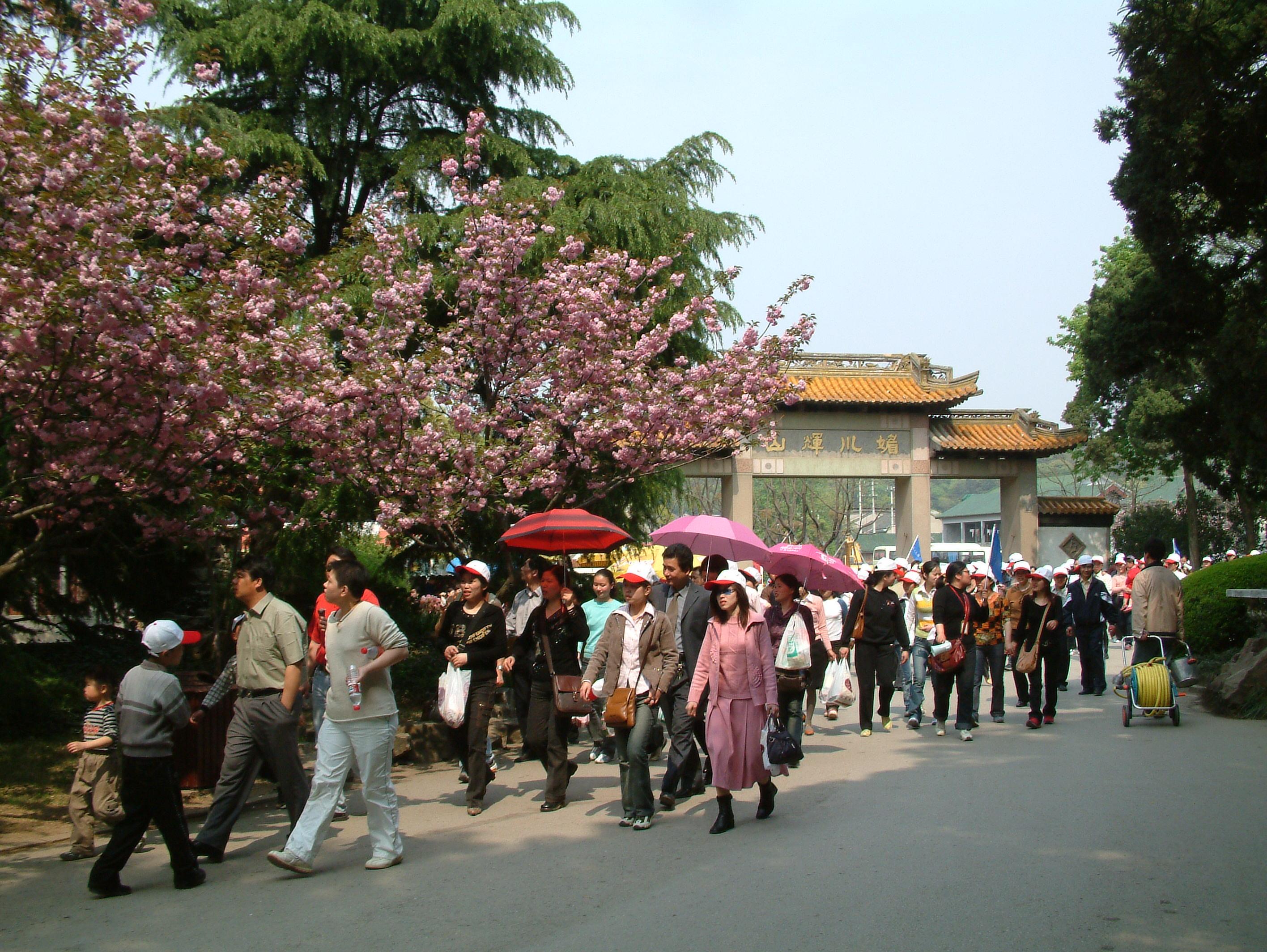 ...出游的旅客提供车位,但是即使算上错时停车,在出现春游客流高... (1)