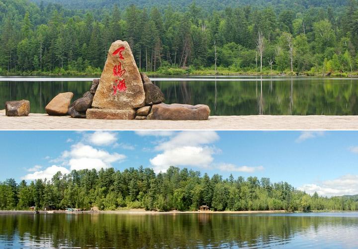 门票 五营国家森林公园门票价格 五营森林公园预订 伊春森林浴 同程网